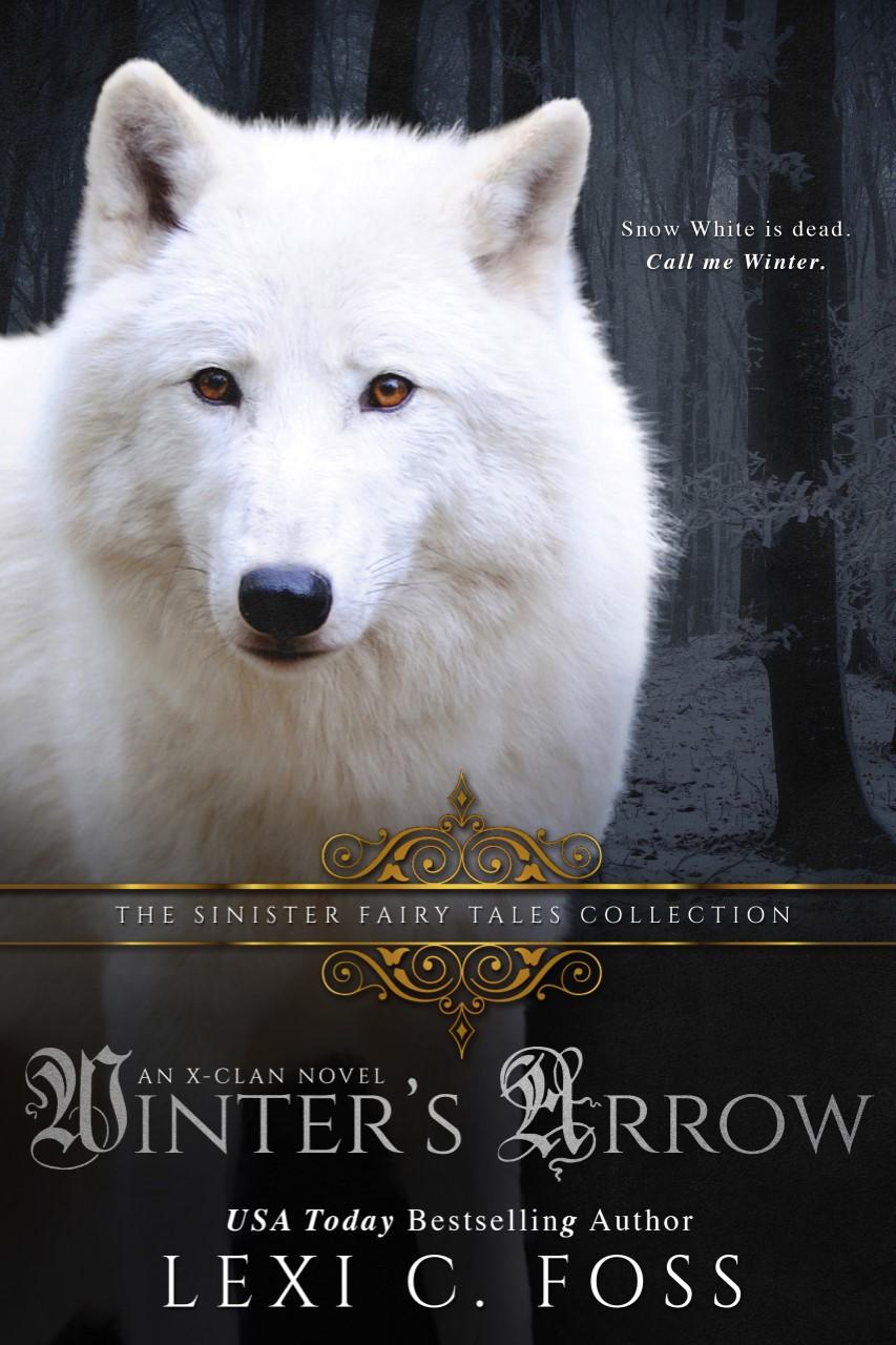 thumbnail_Winters-Arrow-Kindle (1)